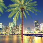 Top 7 Bars You Have to Visit in Miami